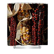 Indian Corn Shower Curtain by Susan Herber