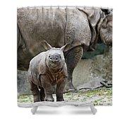 Indian Rhinoceros Rhinoceros Unicornis Shower Curtain