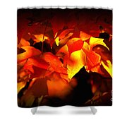 Indian Summer Sparkle Shower Curtain