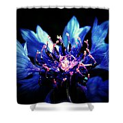 Indigo Bachelor  Shower Curtain