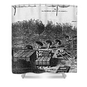 Indigo Culture Shower Curtain by Photo Researchers