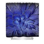 Indigo Dew Shower Curtain