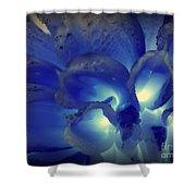 Indigo Dew II Shower Curtain