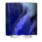 Indigo Dew IIi Shower Curtain
