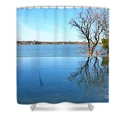 Infinity Shower Curtain