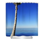 Infinity Pool Palm Shower Curtain