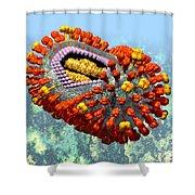 Influenza Structure On Blue Shower Curtain
