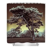 Infrared Tree Shower Curtain