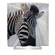 Inquisitive  Shower Curtain