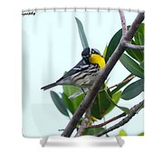 Inquisitive Yellow Throated Warbler Shower Curtain