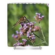 Insect And Flower Shower Curtain