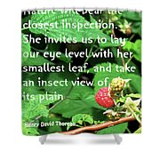 Insect View Shower Curtain