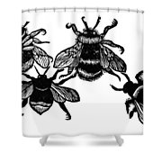 Insects: Bees Shower Curtain
