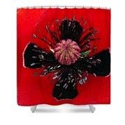 Inside A Poppy Shower Curtain