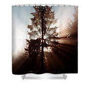 Inspiration Tree Shower Curtain