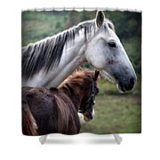 Instinct Of Love Shower Curtain by Karen Wiles