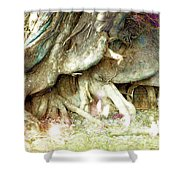 Into The Light Elves Shower Curtain