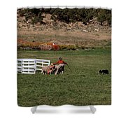 Into The Paddock Shower Curtain