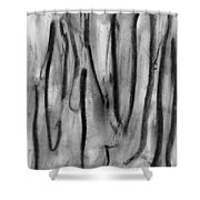 Invisible Lives Shower Curtain