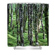 Ireland 0001 Shower Curtain