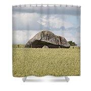 Ireland 0004 Shower Curtain