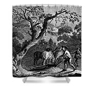 Ireland: Linen Manufacture Shower Curtain