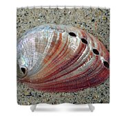 Iridescent Treasure Macro Shower Curtain