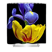 Iris And Tulip Shower Curtain