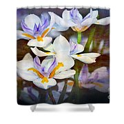 Iris Art Shower Curtain
