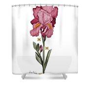 Iris I Shower Curtain by Anne Norskog
