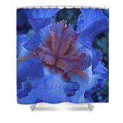 Iris Oil Painting Shower Curtain