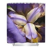 Iris Smiles Shower Curtain