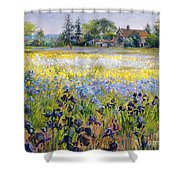 Irises And Two Fir Trees Shower Curtain