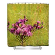 Ironweed In Autumn Shower Curtain