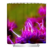 Ironweed Shower Curtain