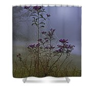 Ironweed Morning Shower Curtain