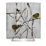 Is It Snowing On Your Side Shower Curtain