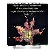 Isaiah 11 2 Shower Curtain