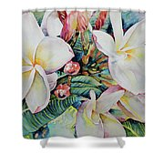 Islands Beauties Shower Curtain