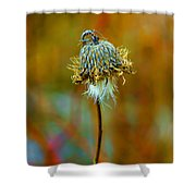 Isolated Locoweed Shower Curtain