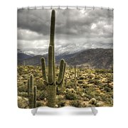 It Does Snow In The Desert Shower Curtain