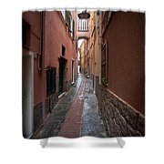 Italian Pathway Shower Curtain