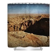 It's A Big Desert Out There Shower Curtain