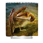 It's Cleaning Day By Pelicans Shower Curtain