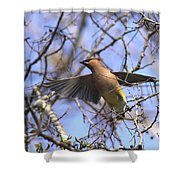 It's Flying Time Again Shower Curtain