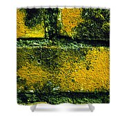 Ivy And Old Wall Shower Curtain