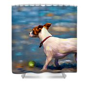 Jack At The Beach Shower Curtain by Michelle Wrighton