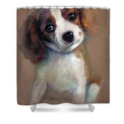 Jack Russell Terrier Dog Shower Curtain