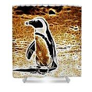 Jackass Penguin  Shower Curtain