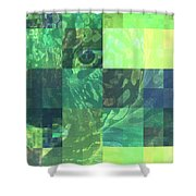Jaguar Graph Geo Green Shower Curtain